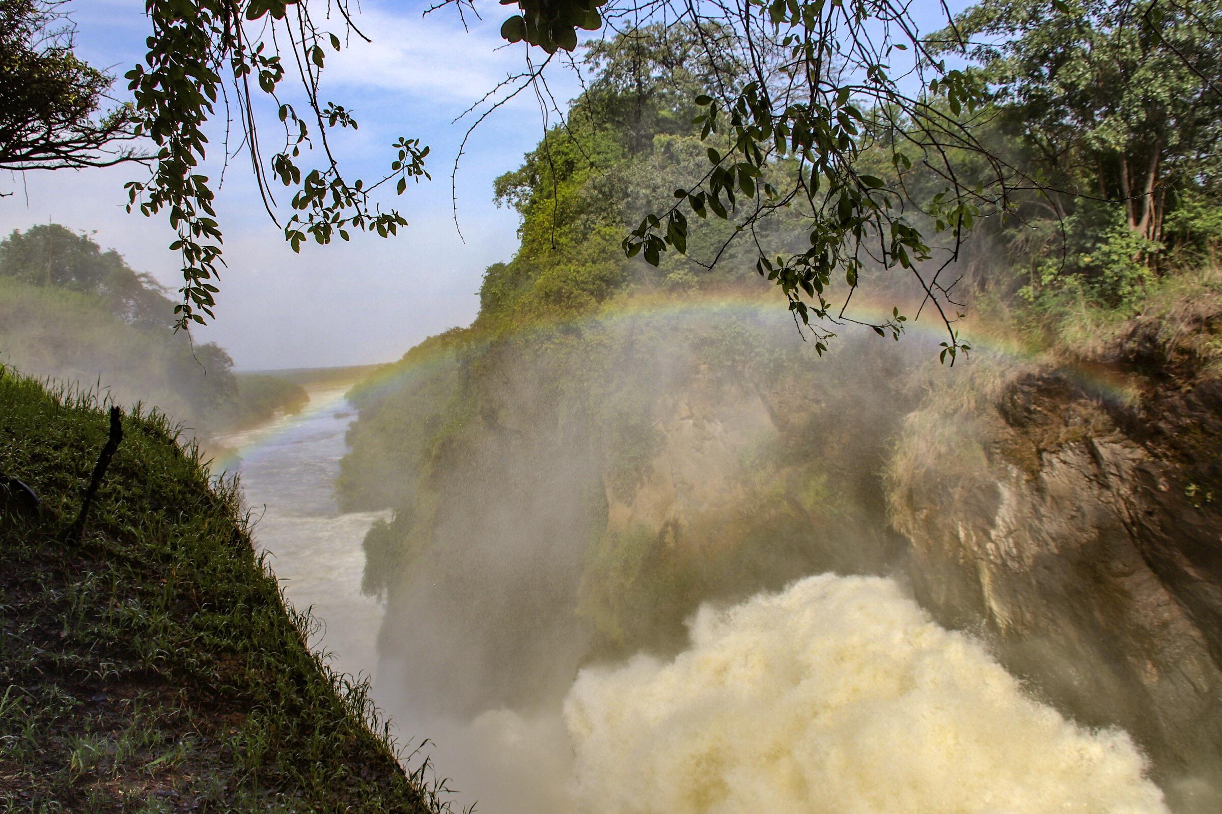 10-Day Wildlife Big 5, Murchison Falls, and Gorilla Trekking Safaris in Uganda 10