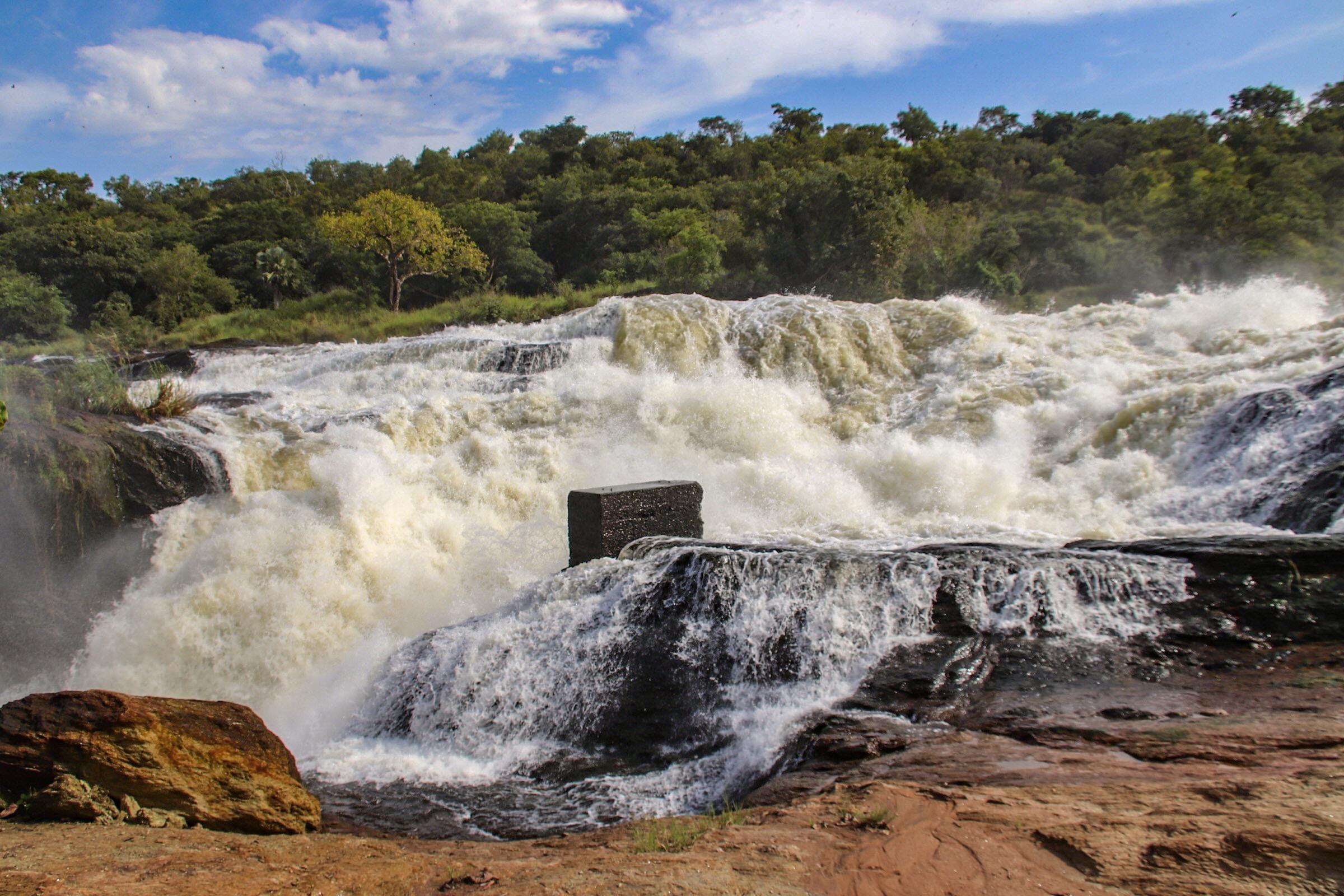 10-Day Wildlife Big 5, Murchison Falls, and Gorilla Trekking Safaris in Uganda 2