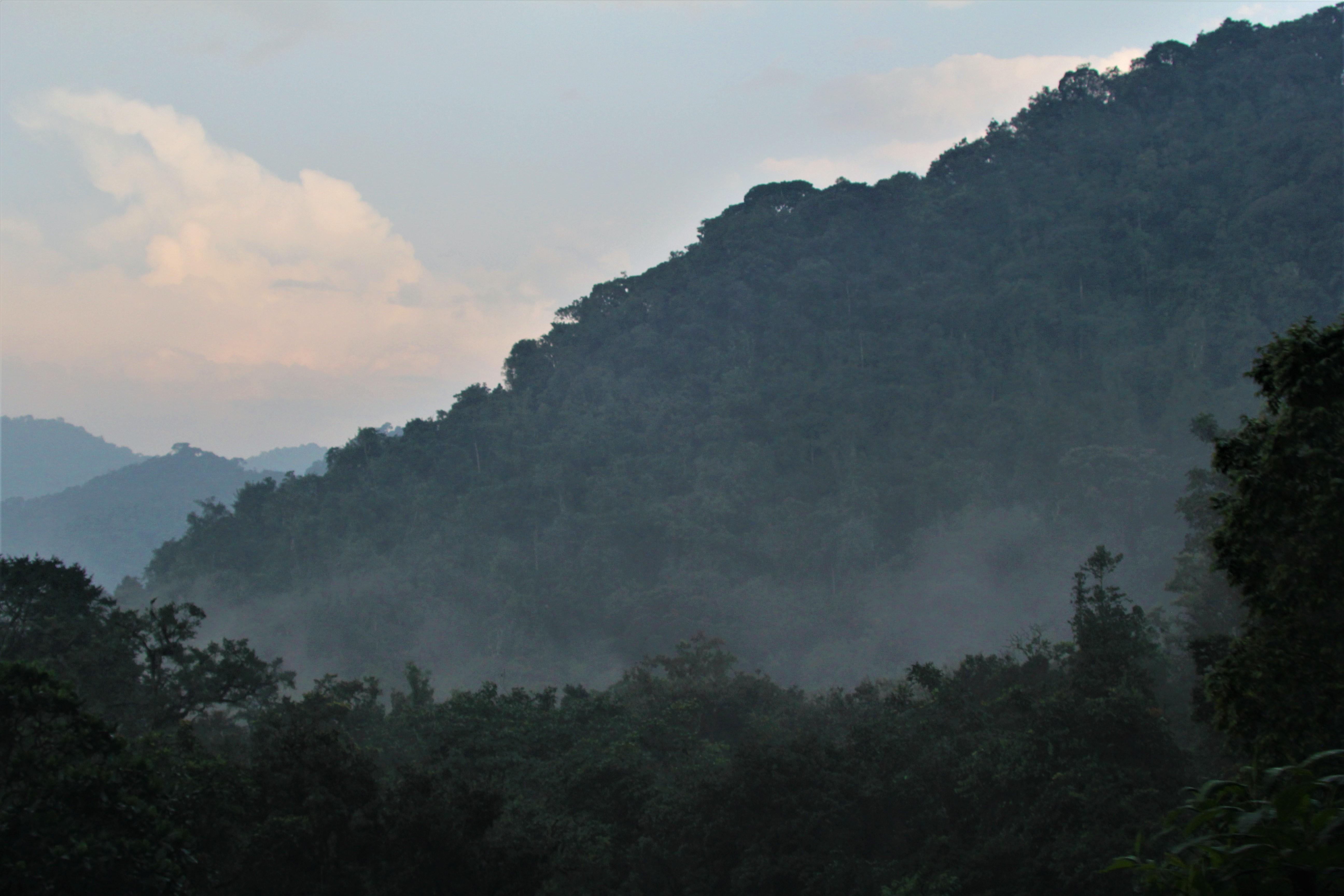 9-Day Trip to Rwanda - Exploring Akagera, Volcanoes, Nyungwe 5